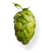 Styrian single hop